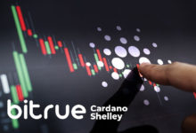 Photo of Bitrue Is First Exchange to Support Cardano's Shelley Hard Fork