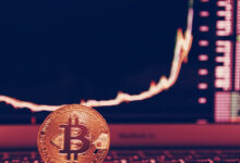 Photo of Crypto apps hit all-time-high last month as bull market roars