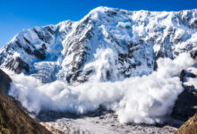 Photo of Here's Why Ethereum Rival Avalanche May Be a Bull in Making